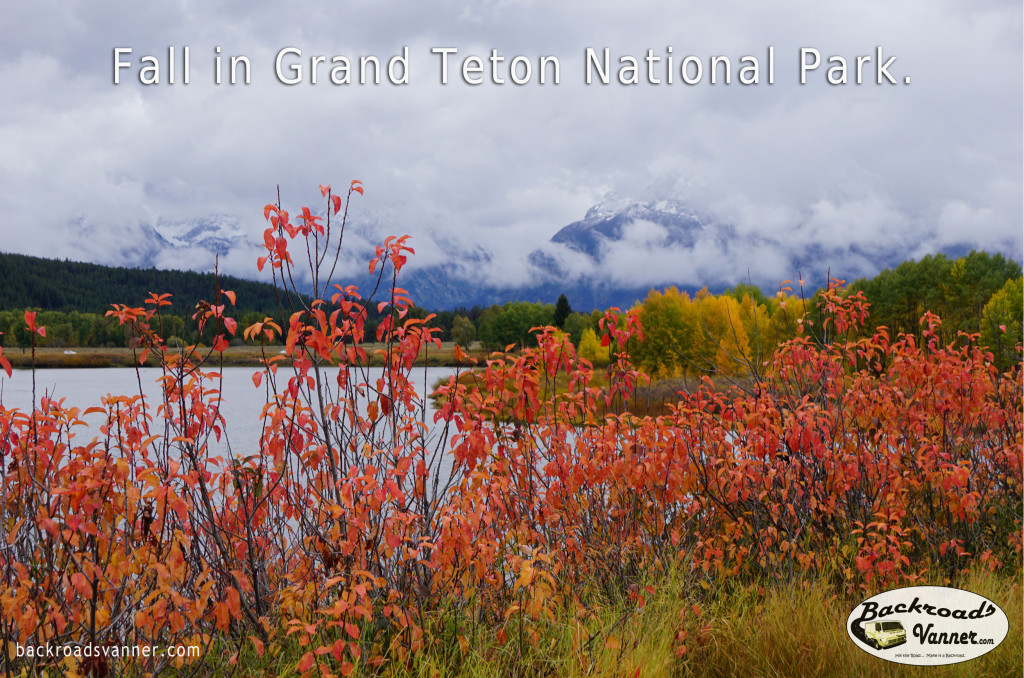 Fall Colors @ Oxbow Bend | Grand Teton National Park | Photo by BackroadsVanner.com